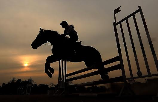 A rider makes her horse gallop during a four bar jumping event